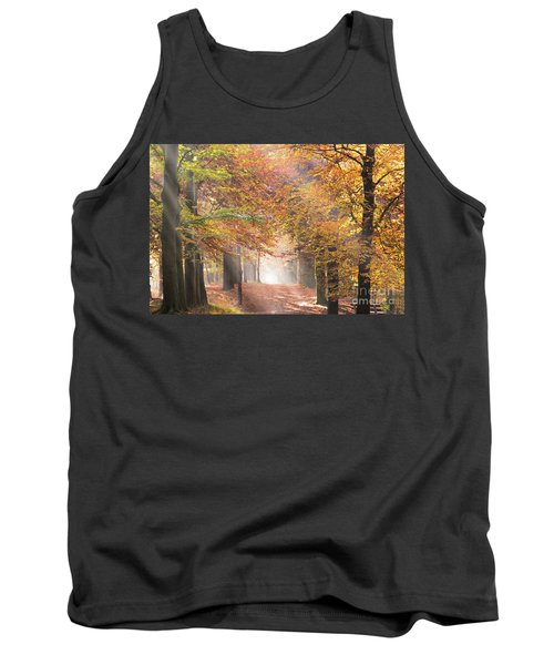 Sunbeams In A Forest In Autumn Tank Top