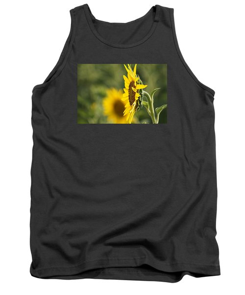 Sunflower Delight Tank Top by Kathy Churchman
