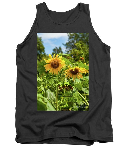Sunflowers In Sunshine Tank Top