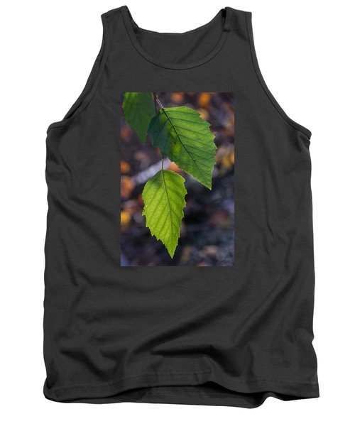 Sunlight Through Birch Leaf Branch Tank Top