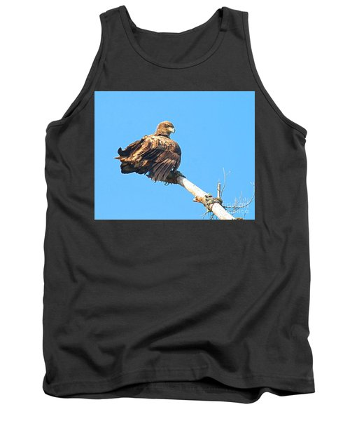 Tank Top featuring the photograph Sunning Out On A Limb by Debbie Stahre