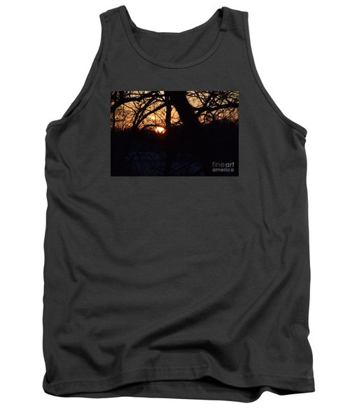 Tank Top featuring the photograph Sunrise In The Woods by Mark McReynolds