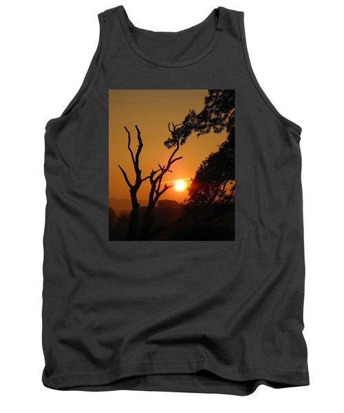 Sunrise Trees Tank Top