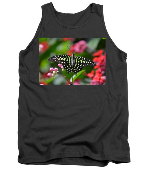 Tailed Jay4 Tank Top by Ronda Ryan