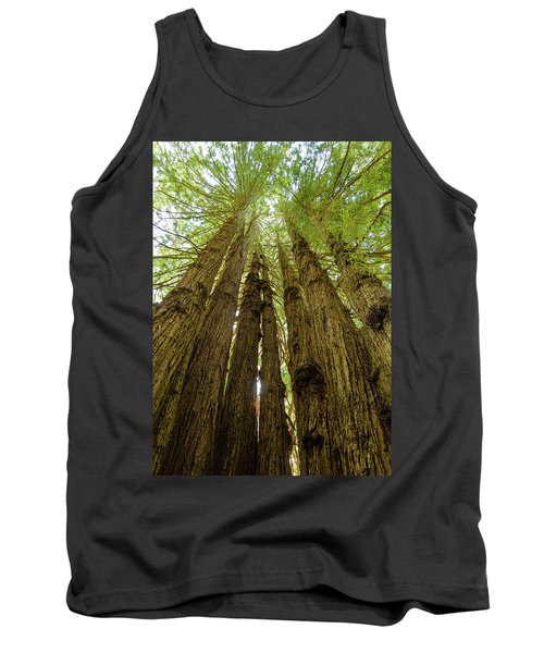 Tall Trees Tank Top