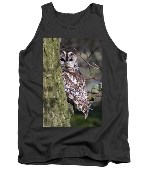 Tawny Owl In A Woodland Tank Top