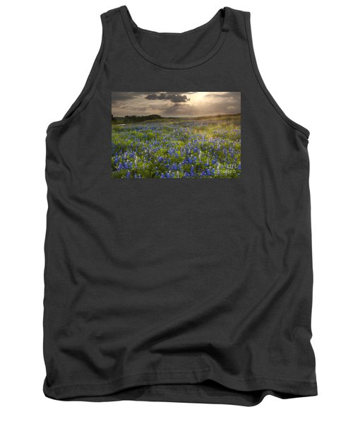 Texas Bluebonnets At Sunrise Tank Top by Keith Kapple