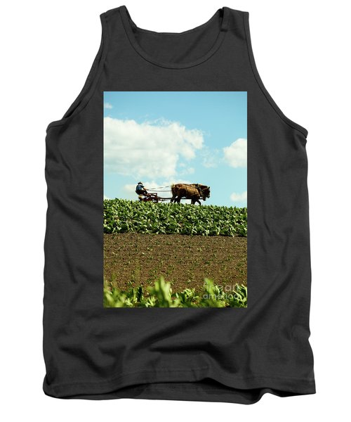 The Amish Farmer With Horses In Tobacco Field Tank Top