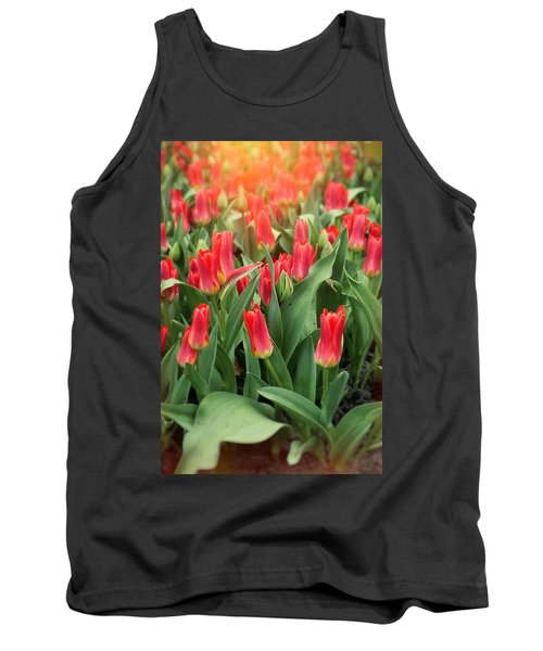 The Army Tank Top