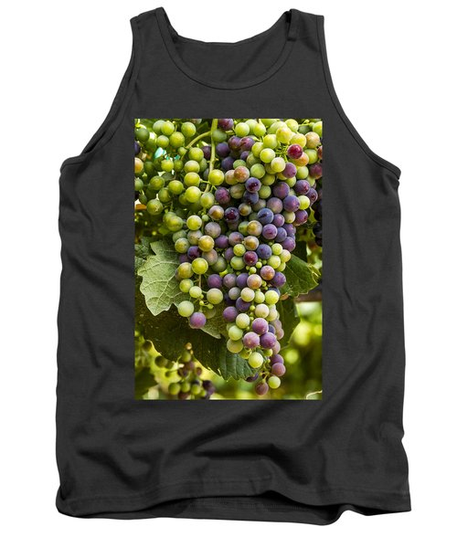 The Art Of Wine Grapes Tank Top