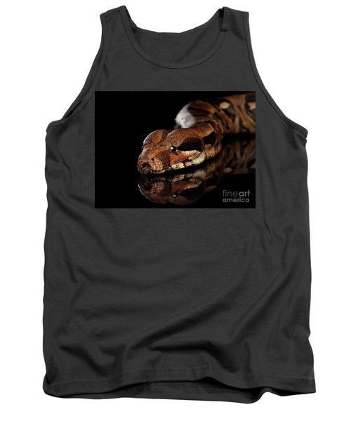 The Boa Constrictors, Isolated On Black Background Tank Top by Sergey Taran