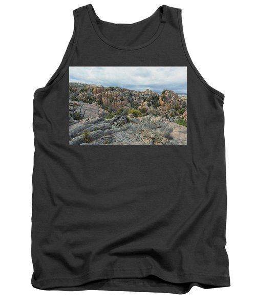 The Dells Tank Top