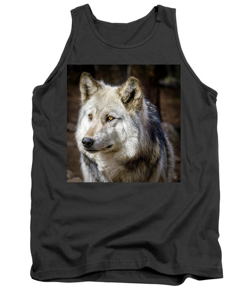 Tank Top featuring the photograph The Gray Wolf by Teri Virbickis