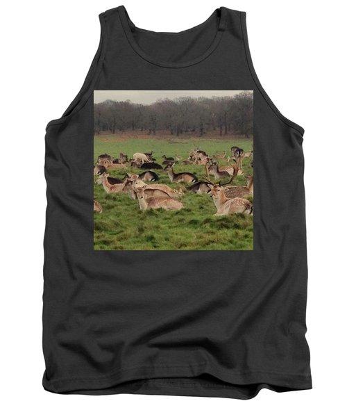 The Land Of Deers Tank Top