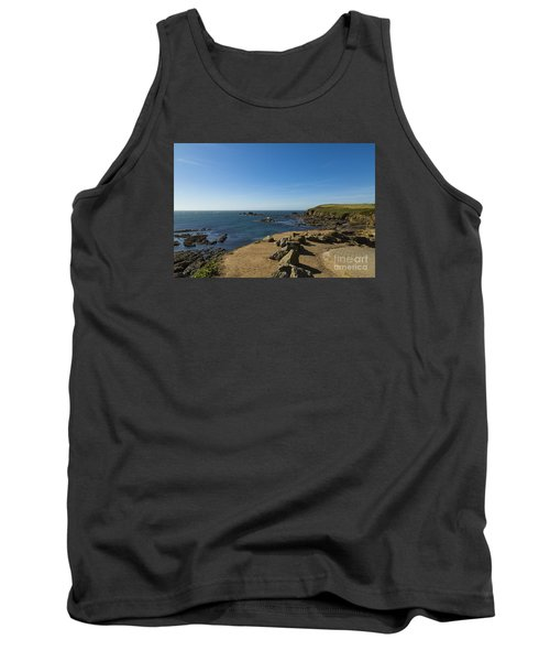 Tank Top featuring the photograph The Lizard Point by Brian Roscorla