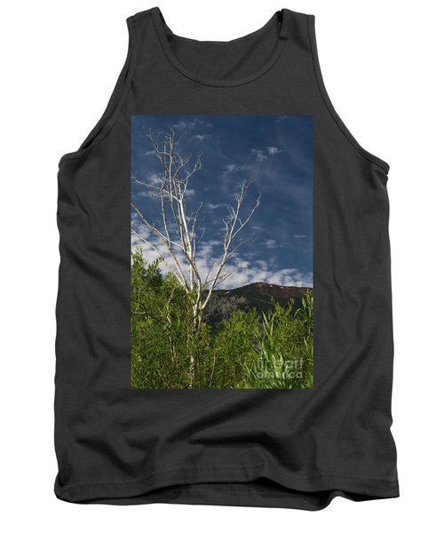 The Lonely Aspen  Tank Top