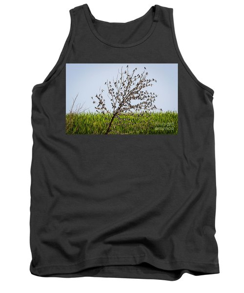 Tank Top featuring the photograph The More The Merrier- Tree Swallows  by Ricky L Jones
