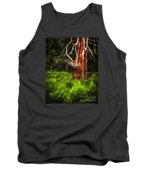 The Old Tree Tank Top