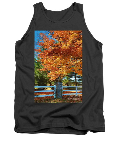 Tank Top featuring the photograph The Old Yard Light by Robert Pearson