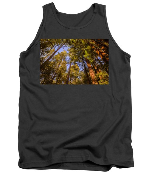 The Portola Redwood Forest Tank Top