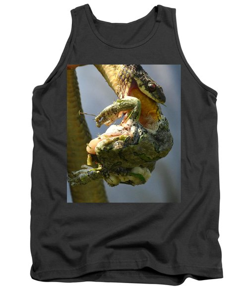 The Serpent And The Frog Tank Top by Lisa DiFruscio