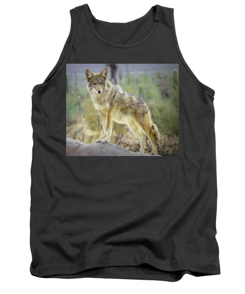The Stance Tank Top