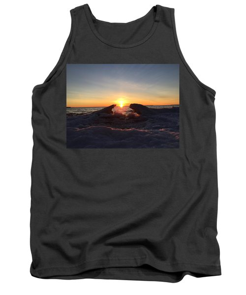 Tank Top featuring the photograph The Walrus And The Bear by Paula Brown