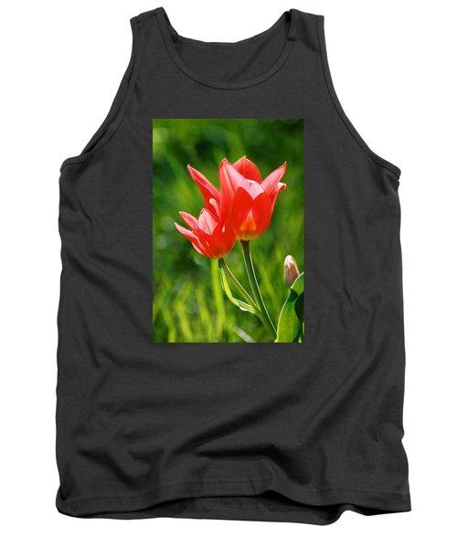 Toronto Tulip Tank Top by Steve Karol