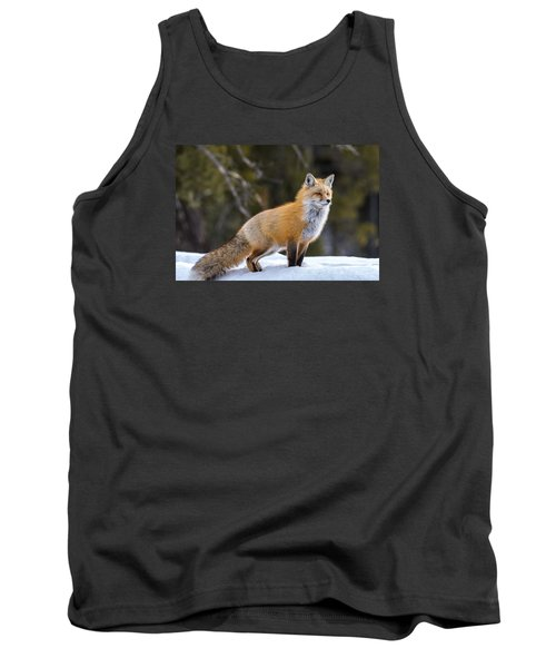 Tank Top featuring the photograph Totally Foxy by Yeates Photography