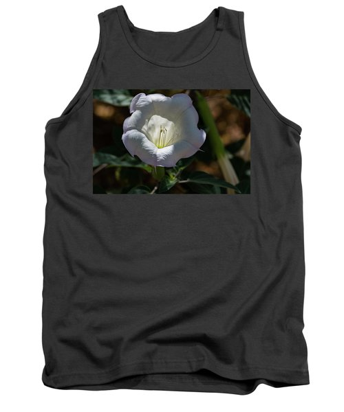Touch Of Color Tank Top