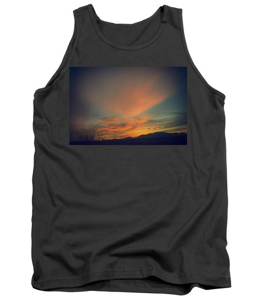 Tranquil Sunset Tank Top by Barbara Manis