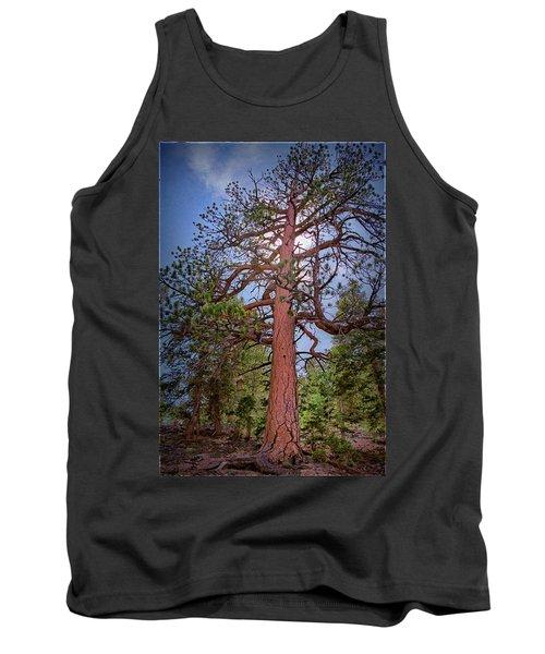 Tree Cali Tank Top