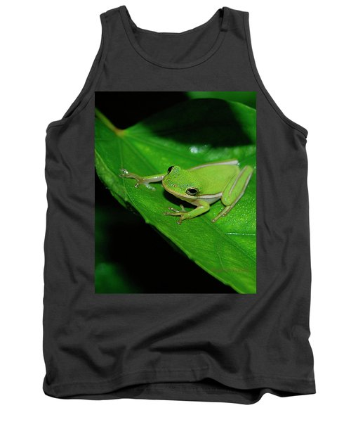 Tree Frog On Hibiscus Leaf Tank Top
