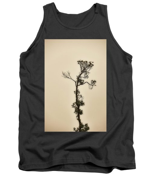 Tree In The Mist Tank Top by Rajiv Chopra