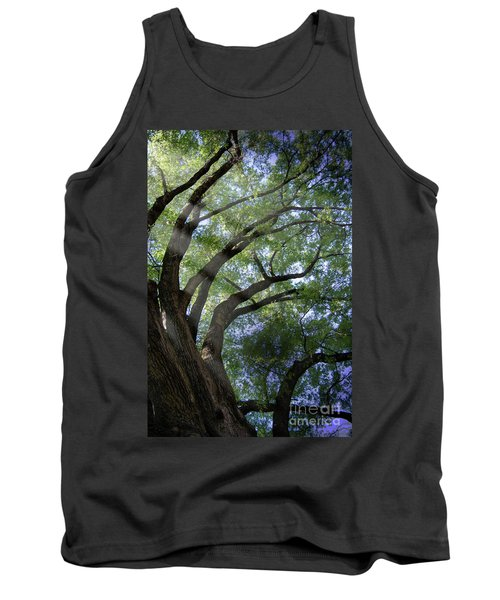 Tree Rays Tank Top by Brian Jones