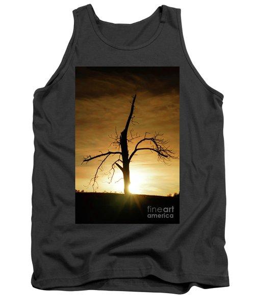 Tree Silhouette At Sundown Tank Top