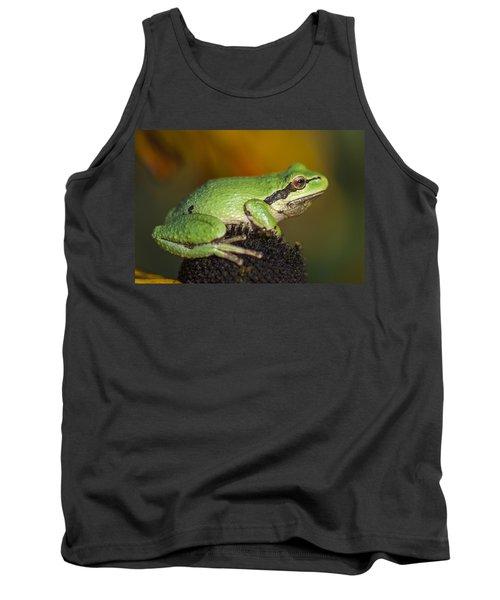 Treefrog On Rudbeckia Tank Top