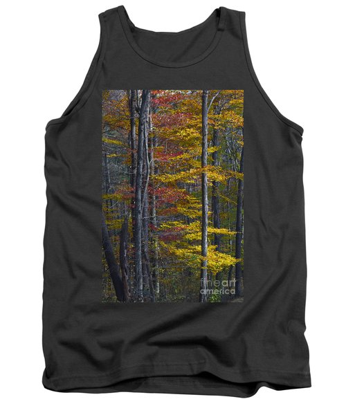 Trees With Autumn Colors 8260c Tank Top