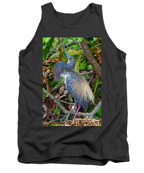 Tricolor Breeding Display Tank Top by Larry Nieland