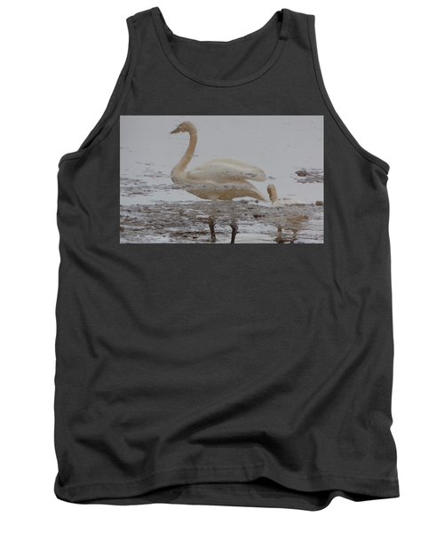 Tank Top featuring the photograph Trumpeter Swan Reflection by Karen Molenaar Terrell