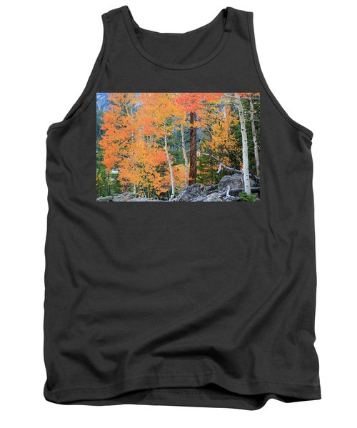 Tank Top featuring the photograph Twisted Pine by David Chandler