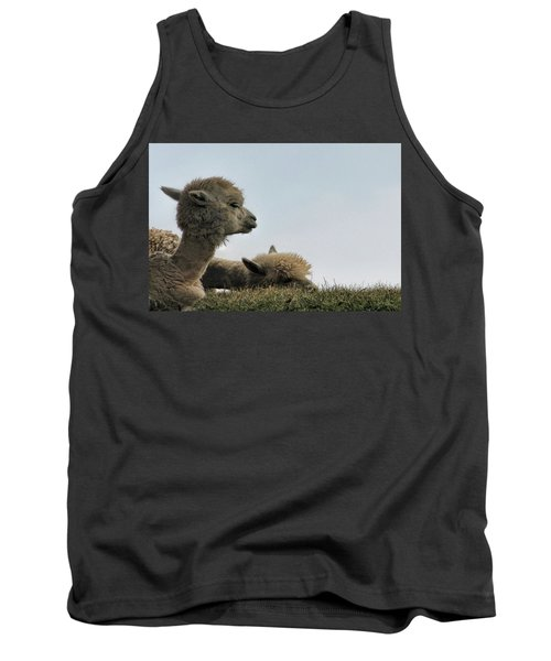 Two Alpaca Tank Top by Pat Cook