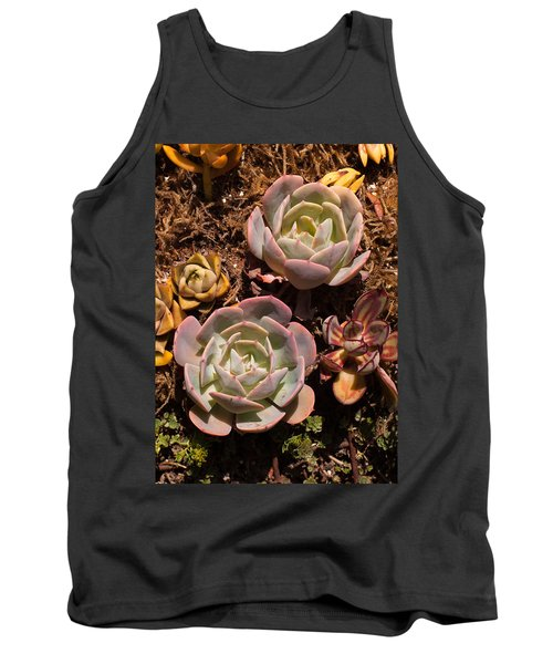 Two Succulents  Tank Top by Catherine Lau
