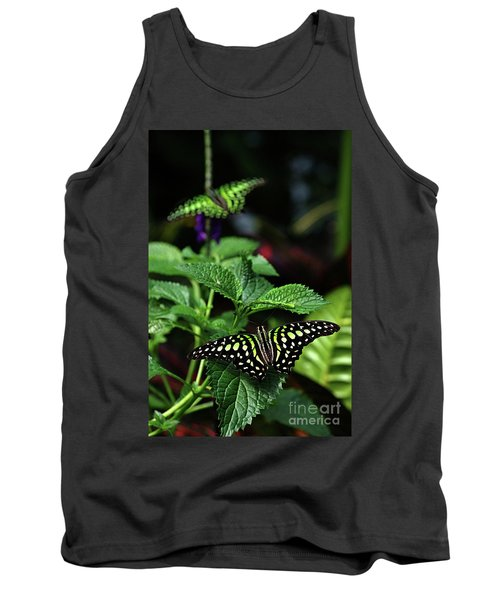 Two Tailed Jay Butterflies- Graphium Agamemnon Tank Top