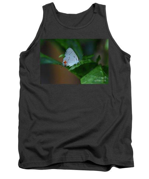 Unusual Butterfly Grey Hairstreak Strymon Melinus Tank Top