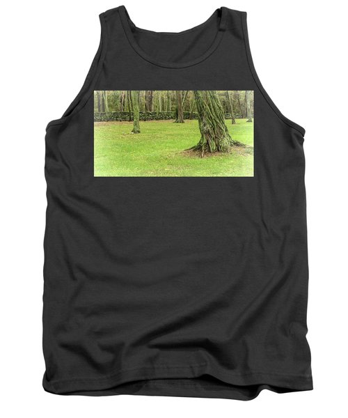 Venerable Trees And A Stone Wall Tank Top