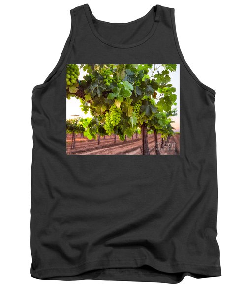 Vineyard 3 Tank Top
