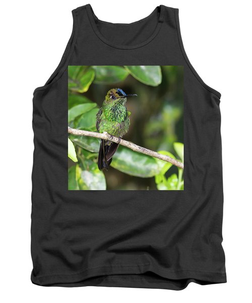Violet-fronted Brilliiant Tank Top