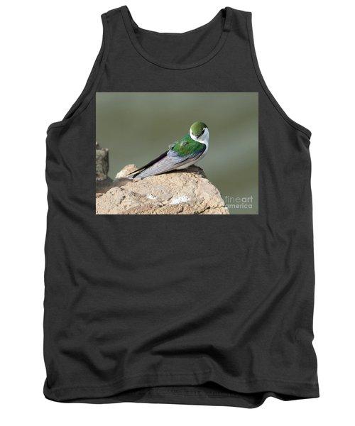 Violet-green Swallow Tank Top