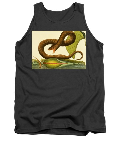 Viper Fusca Tank Top by Mark Catesby